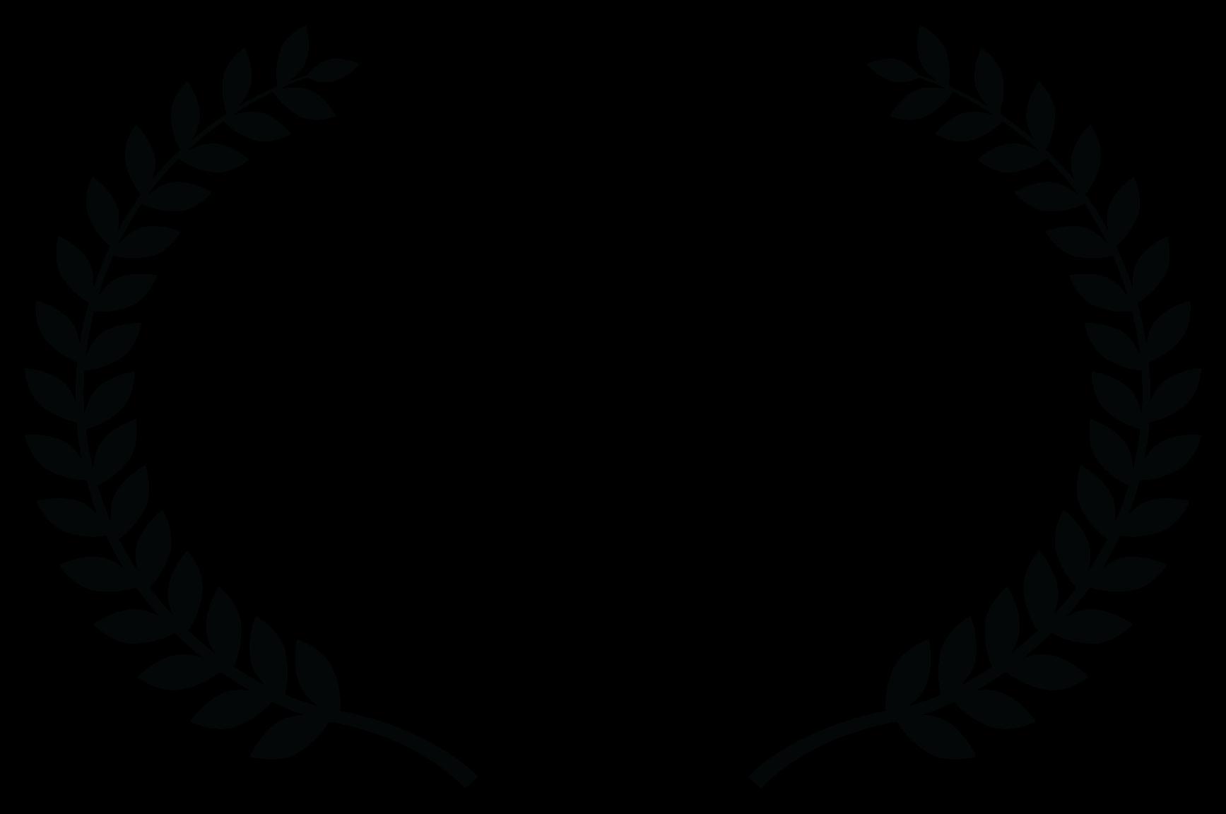 Donald E. Lacy Jr. Social Justice Award - Studio City International Film Festival - 2020